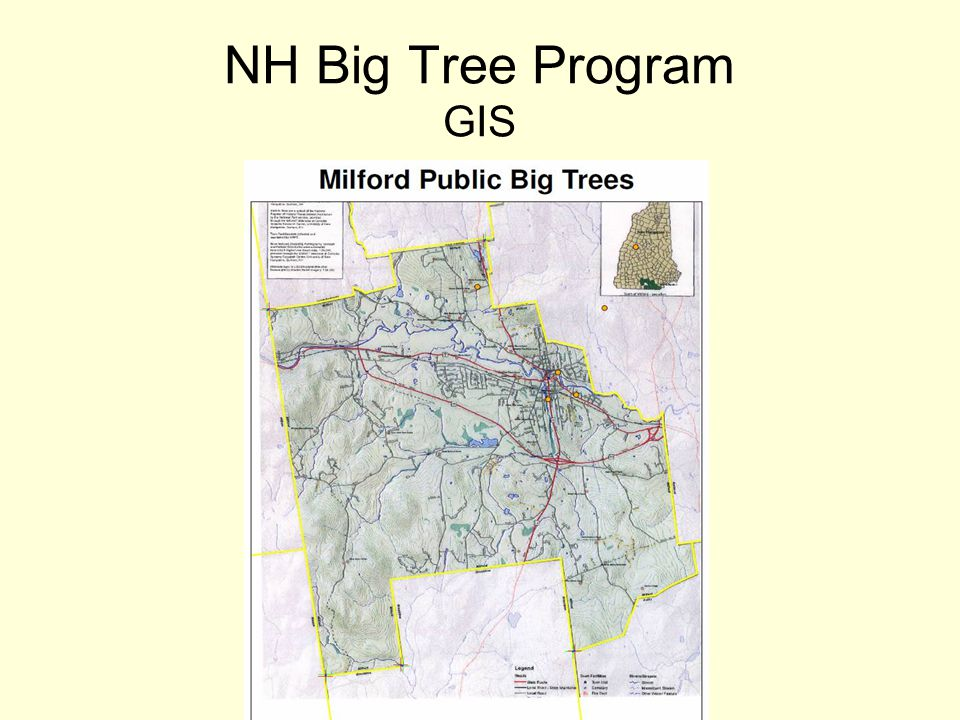 NH Big Tree Program GIS