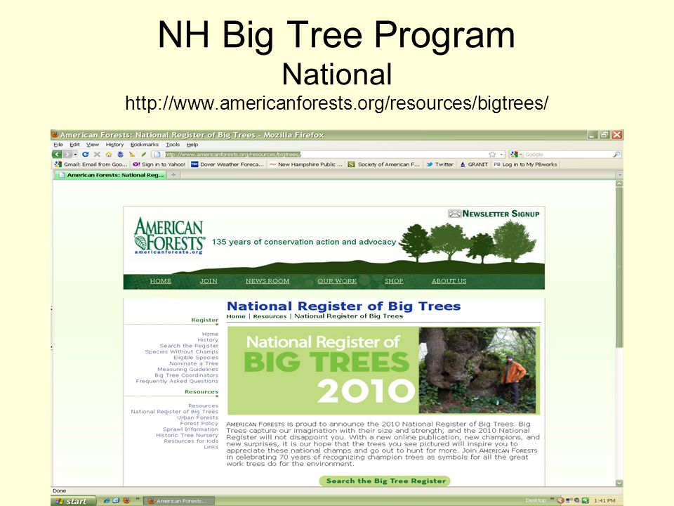 NH Big Tree Program National http://www.americanforests.org/resources/bigtrees/