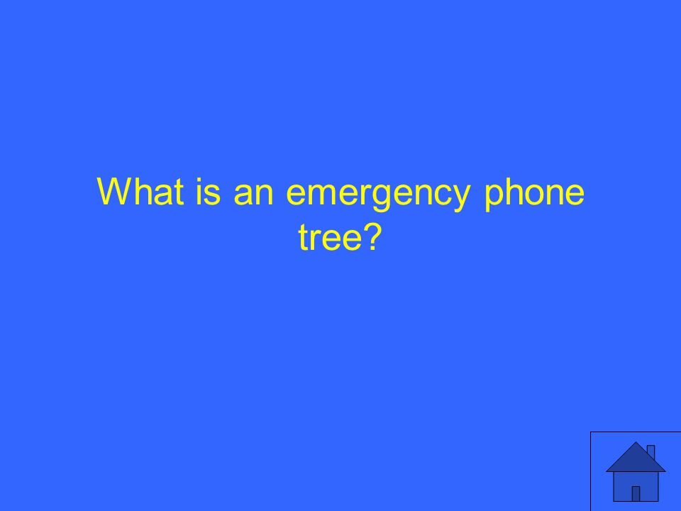 What is an emergency phone tree?