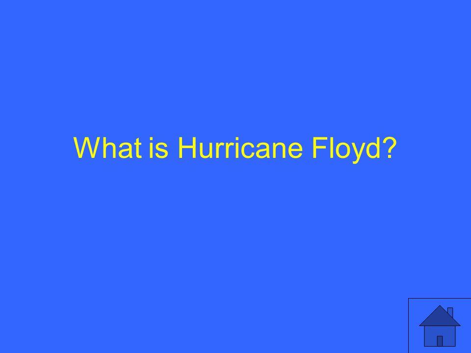 What is Hurricane Floyd