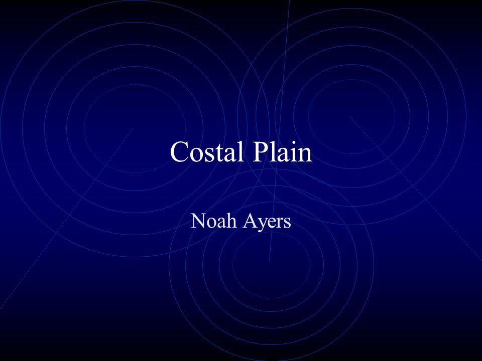 Costal Plain Noah Ayers