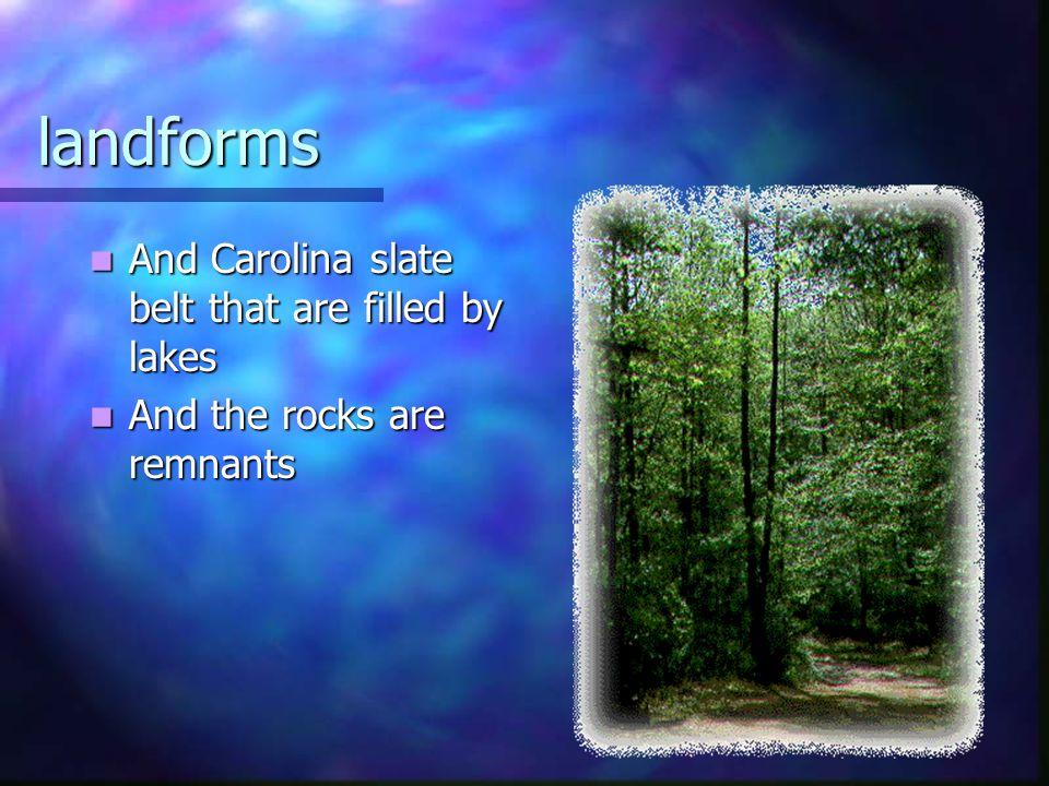 landforms And Carolina slate belt that are filled by lakes And Carolina slate belt that are filled by lakes And the rocks are remnants And the rocks a
