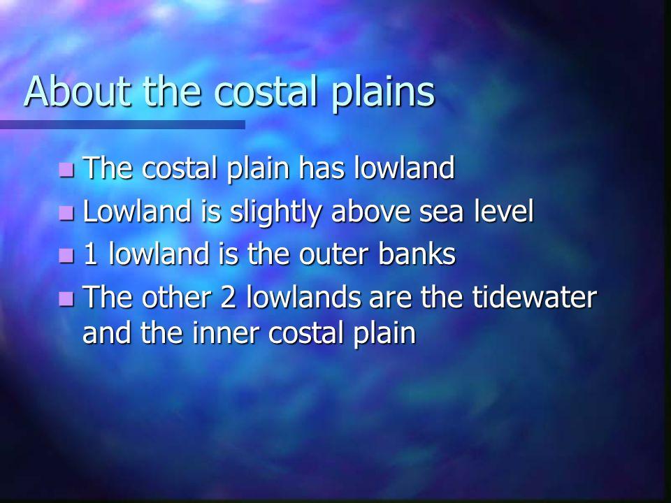 About the costal plains The costal plain has lowland The costal plain has lowland Lowland is slightly above sea level Lowland is slightly above sea le