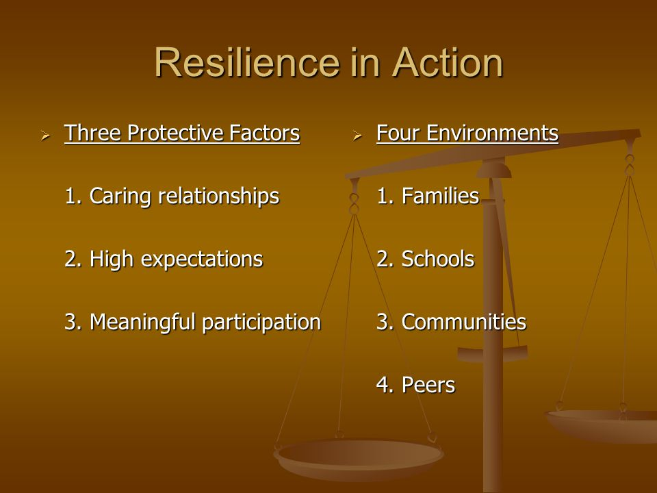 Resilience in Action  Three Protective Factors 1. Caring relationships 2. High expectations 3. Meaningful participation  Four Environments 1. Famili