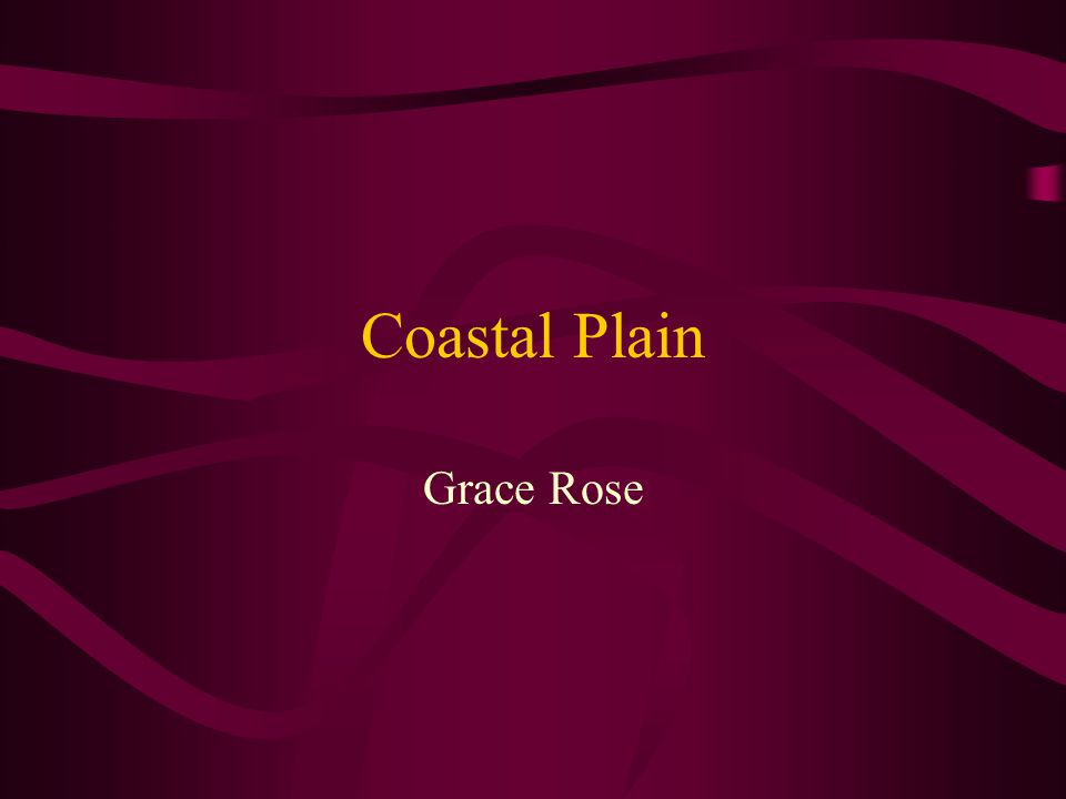 Coastal Plain Grace Rose