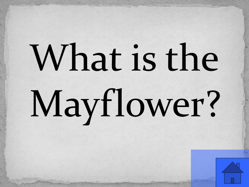 What is the Mayflower