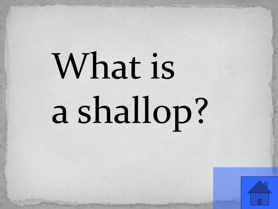 What is a shallop?
