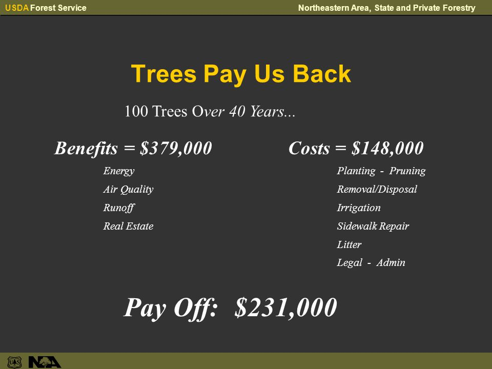 USDA Forest ServiceNortheastern Area, State and Private Forestry Trees Pay Us Back Benefits = $379,000 Energy Air Quality Runoff Real Estate 100 Trees Over 40 Years...