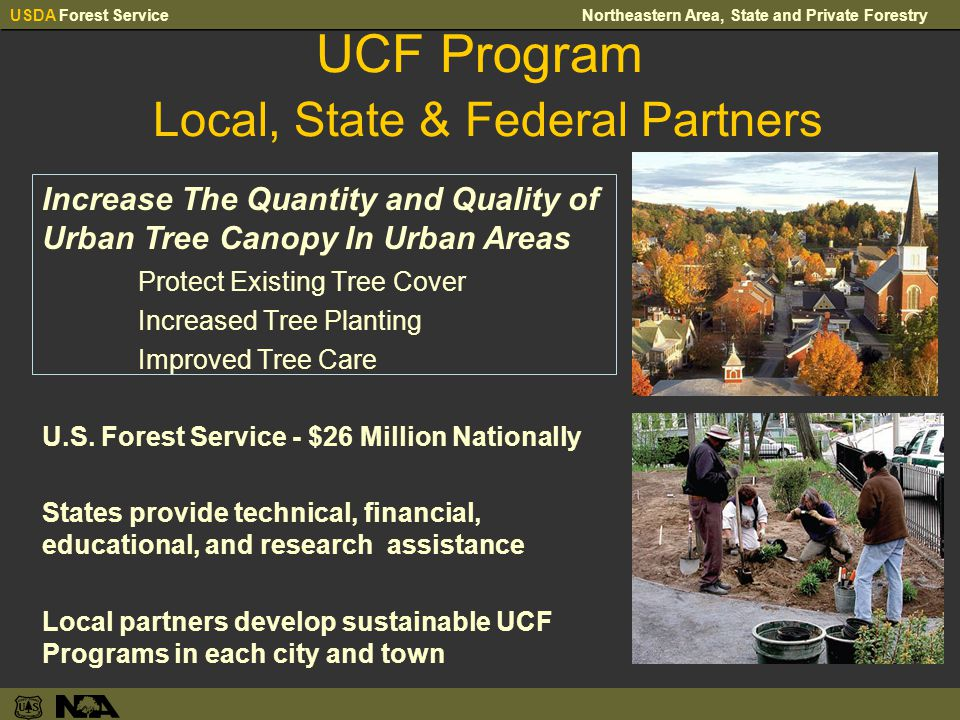 USDA Forest ServiceNortheastern Area, State and Private Forestry UCF Program Local, State & Federal Partners Increase The Quantity and Quality of Urban Tree Canopy In Urban Areas Protect Existing Tree Cover Increased Tree Planting Improved Tree Care U.S.
