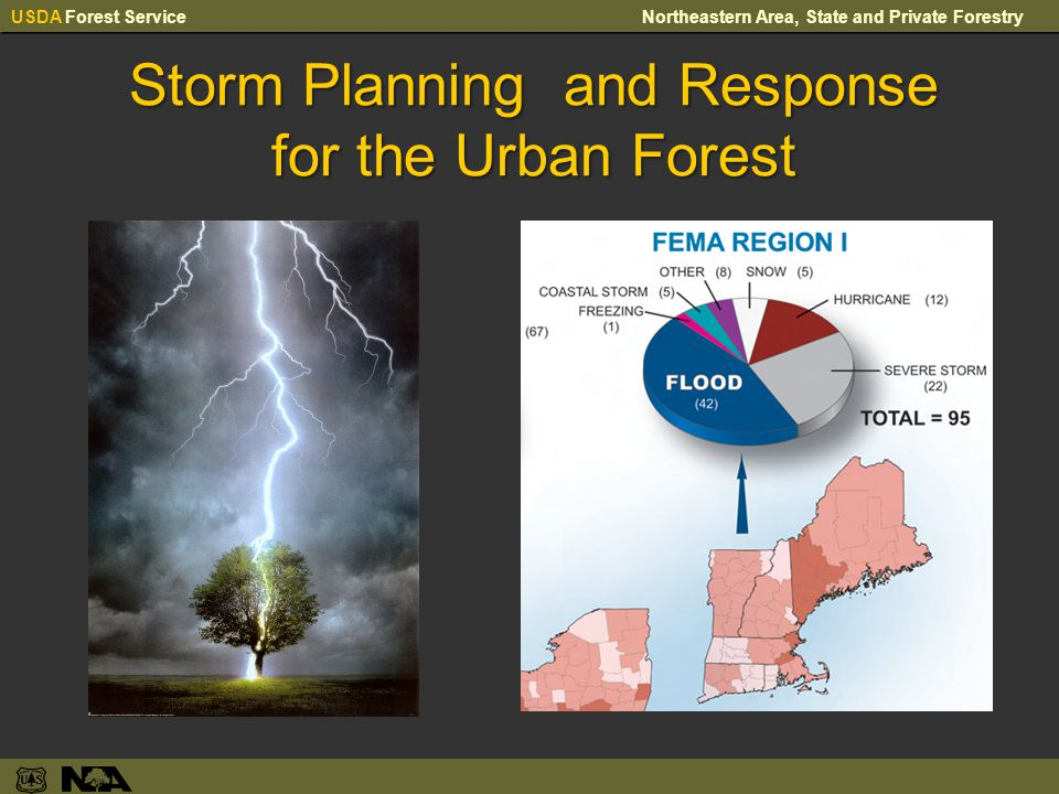 USDA Forest ServiceNortheastern Area, State and Private Forestry Storm Planning and Response for the Urban Forest