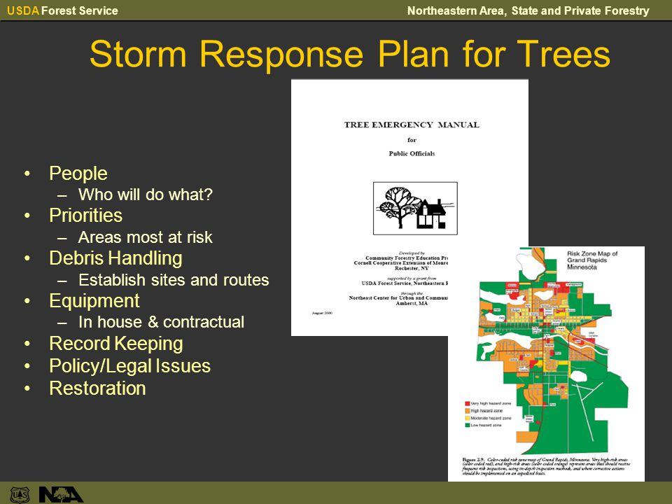 USDA Forest ServiceNortheastern Area, State and Private Forestry Storm Response Plan for Trees People –Who will do what.