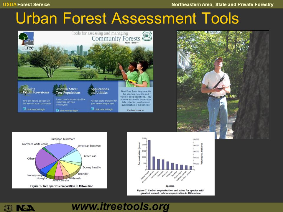 USDA Forest ServiceNortheastern Area, State and Private Forestry Urban Forest Assessment Tools www.itreetools.org