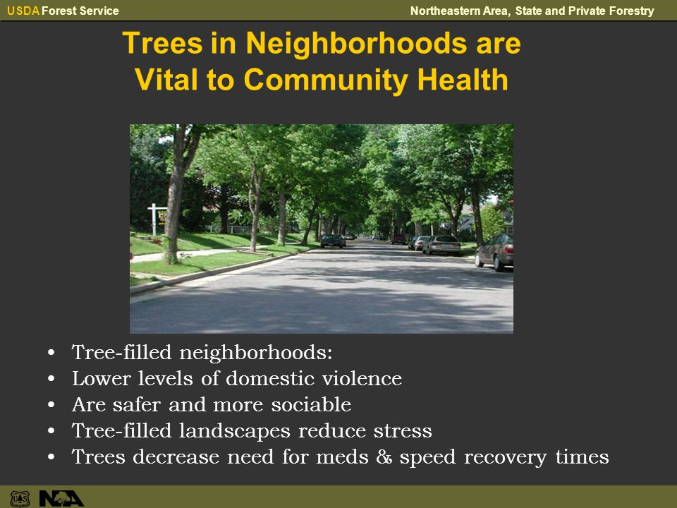 USDA Forest ServiceNortheastern Area, State and Private Forestry Trees in Neighborhoods are Vital to Community Health Tree-filled neighborhoods: Lower levels of domestic violence Are safer and more sociable Tree-filled landscapes reduce stress Trees decrease need for meds & speed recovery times