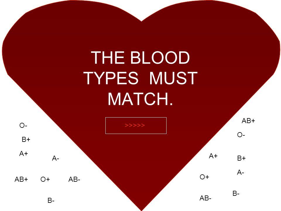 THE BLOOD TYPES MUST MATCH. A+ O+ O- AB+AB- A- B- B+ A- AB- AB+ B+ B- >>>>>