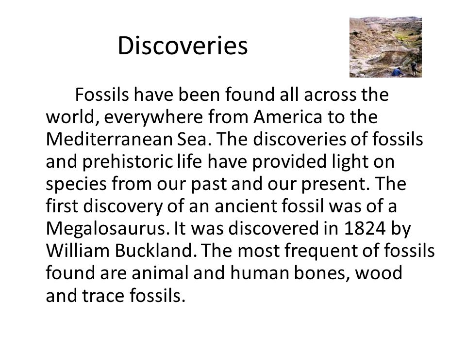 What does Paleontology mean and include.