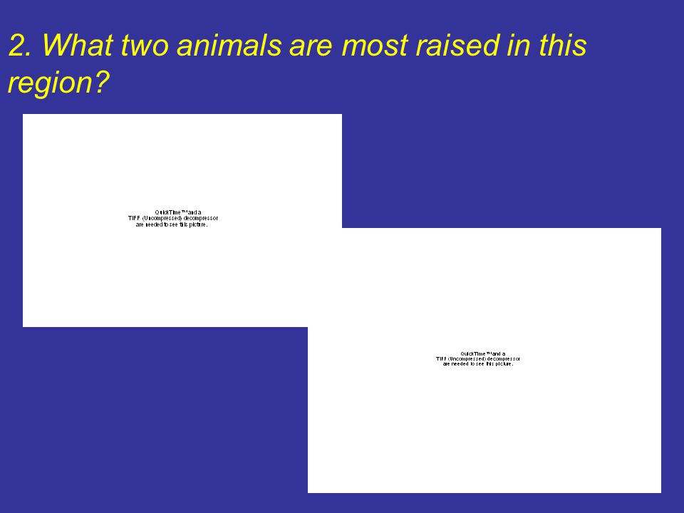 2. What two animals are most raised in this region?