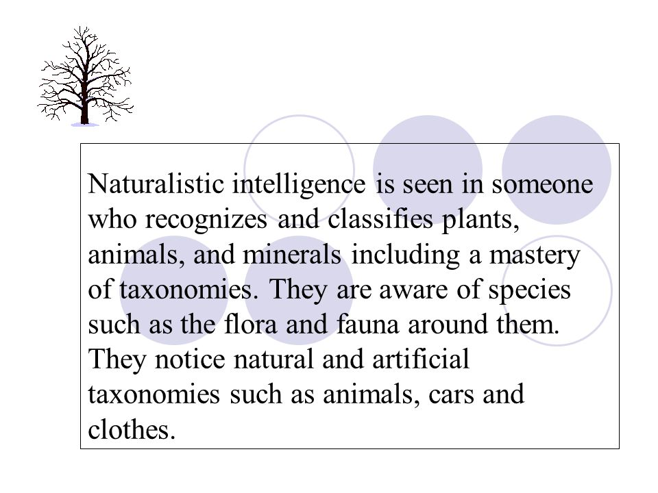 Naturalistic intelligence is seen in someone who recognizes and classifies plants, animals, and minerals including a mastery of taxonomies. They are a