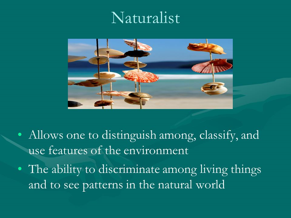 Naturalist Allows one to distinguish among, classify, and use features of the environment The ability to discriminate among living things and to see p