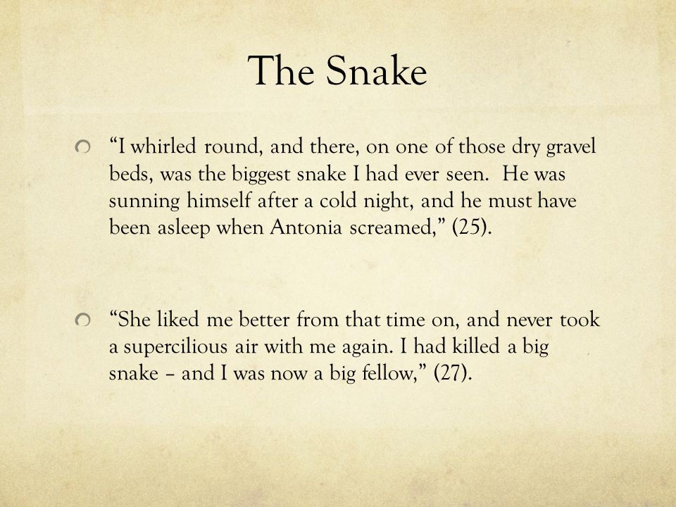 The Snake I whirled round, and there, on one of those dry gravel beds, was the biggest snake I had ever seen.