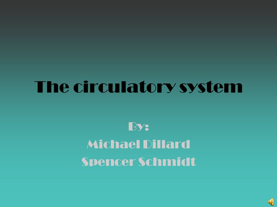 The circulatory system By: Michael Dillard Spencer Schmidt