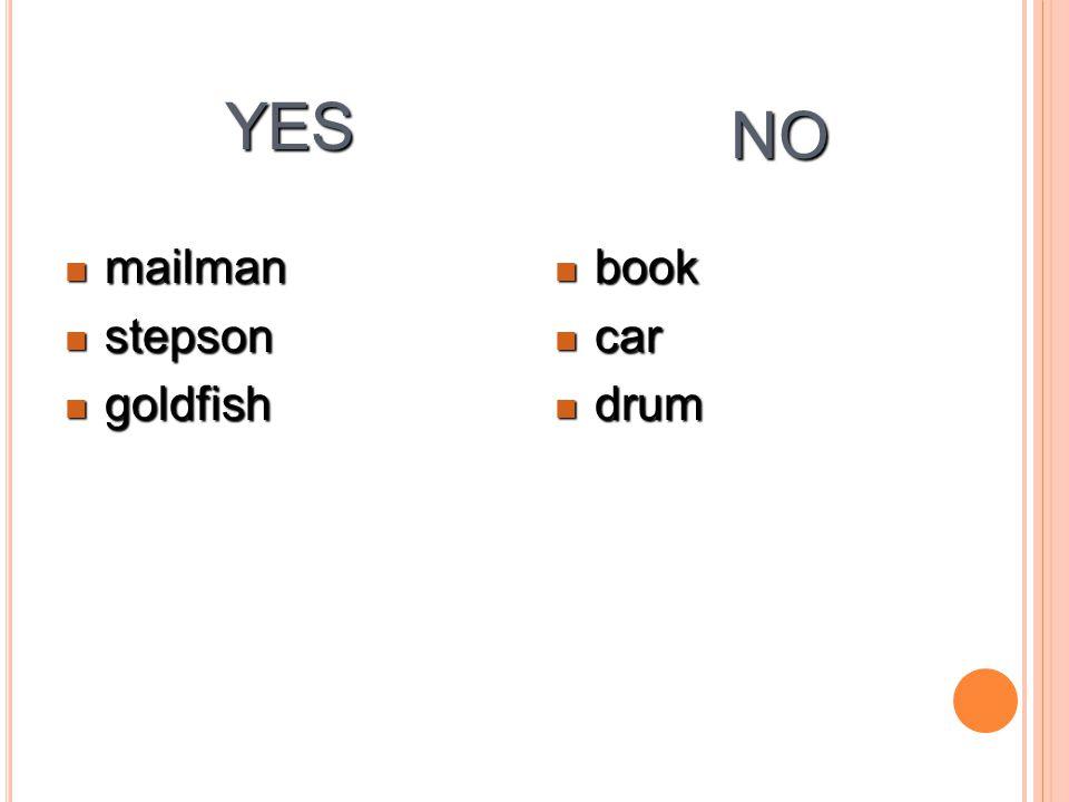 YES mailman mailman stepson stepson goldfish goldfish book book car car drum drum NO