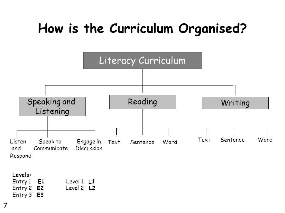 How is the Curriculum Organised.
