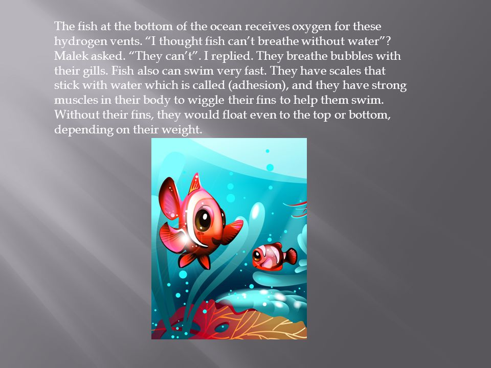 The reason the ocean is so deep is because it has big fish in it, right .