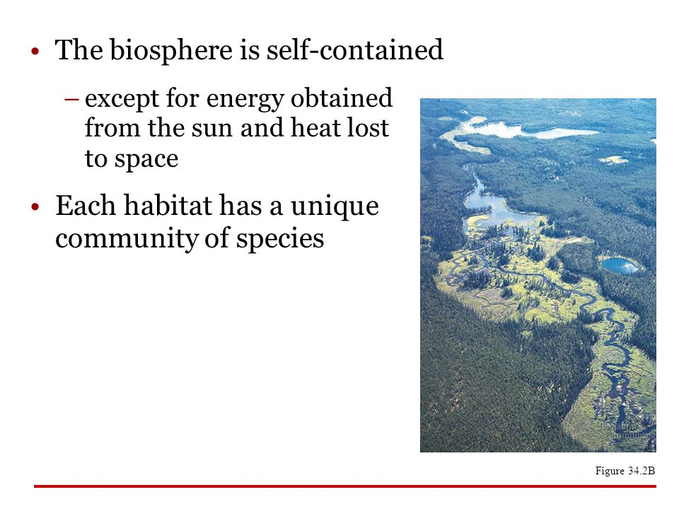 The biosphere is self-contained –except for energy obtained from the sun and heat lost to space Each habitat has a unique community of species Figure