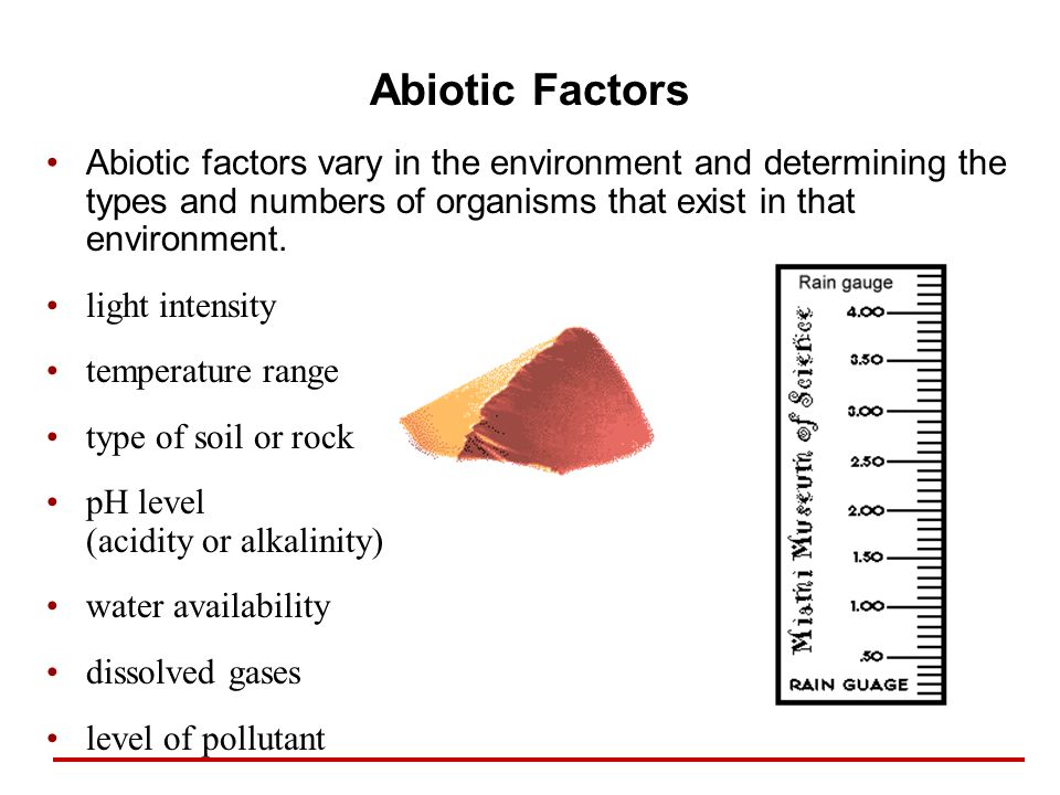 Abiotic Factors Abiotic factors vary in the environment and determining the types and numbers of organisms that exist in that environment. light inten