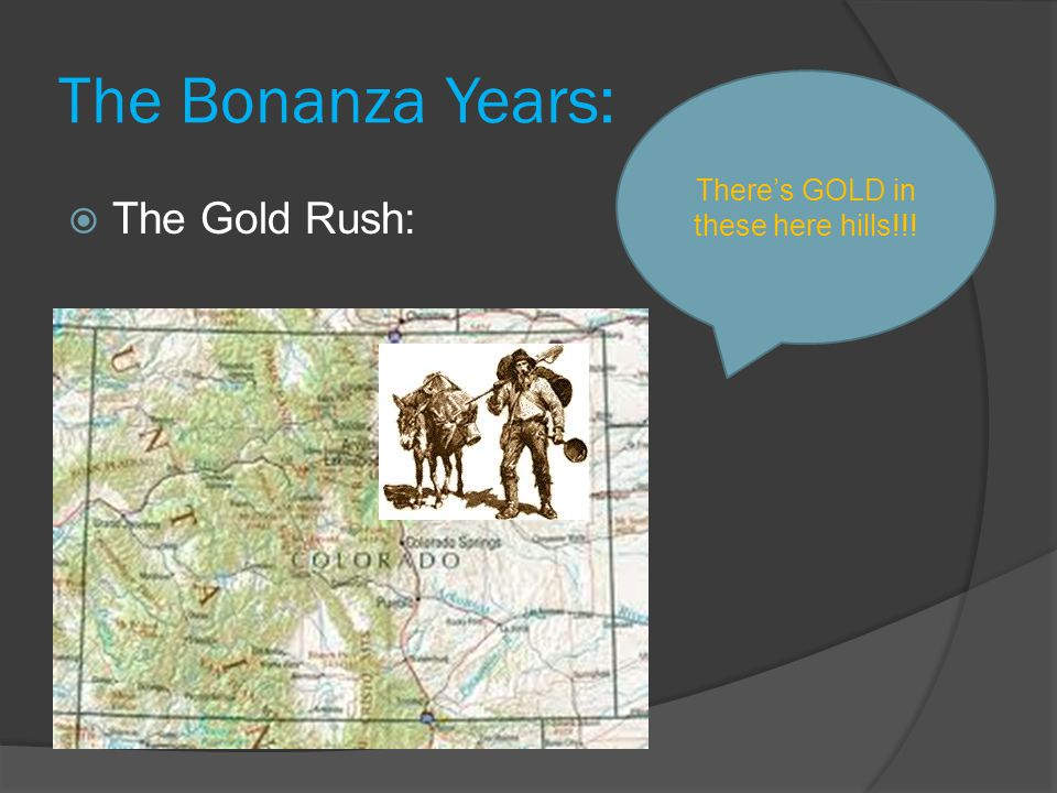 The Bonanza Years:  The Gold Rush: There's GOLD in these here hills!!!