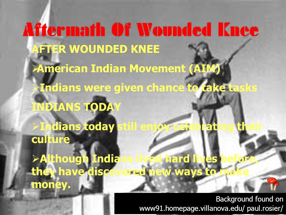 AFTER WOUNDED KNEE  American Indian Movement (AIM)  Indians were given chance to take tasks INDIANS TODAY  Indians today still enjoy celebrating their culture  Although Indians lived hard lives before, they have discovered new ways to make money.