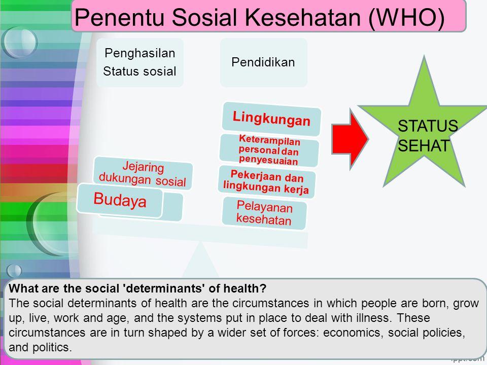 Penentu Sosial Kesehatan (WHO) Penghasilan Status sosial Pendidikan Pelayanan kesehatan Pekerjaan dan lingkungan kerja Keterampilan personal dan penye