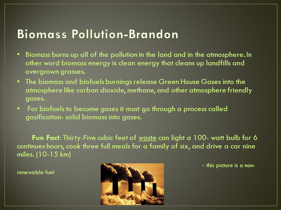 Biomass burns up all of the pollution in the land and in the atmosphere.