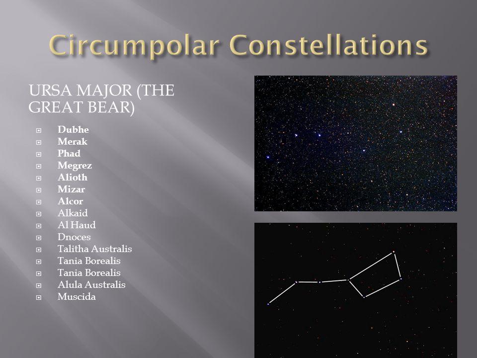 URSA MAJOR (THE GREAT BEAR)  Dubhe  Merak  Phad  Megrez  Alioth  Mizar  Alcor  Alkaid  Al Haud  Dnoces  Talitha Australis  Tania Borealis