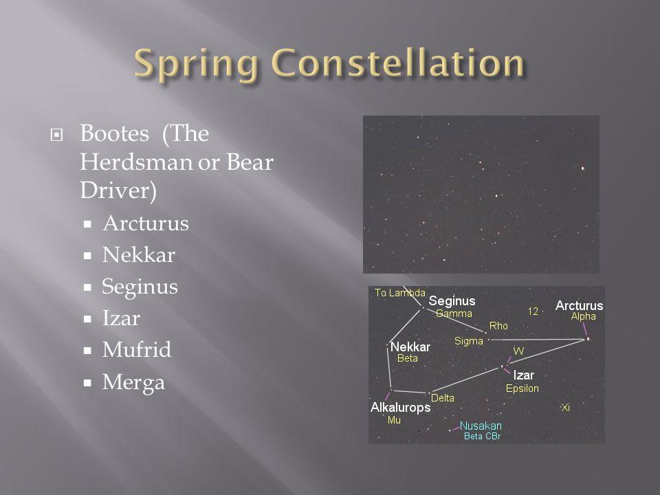  Bootes (The Herdsman or Bear Driver)  Arcturus  Nekkar  Seginus  Izar  Mufrid  Merga