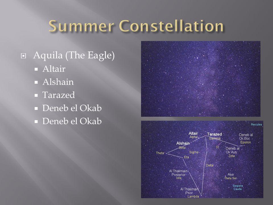  Aquila (The Eagle)  Altair  Alshain  Tarazed  Deneb el Okab