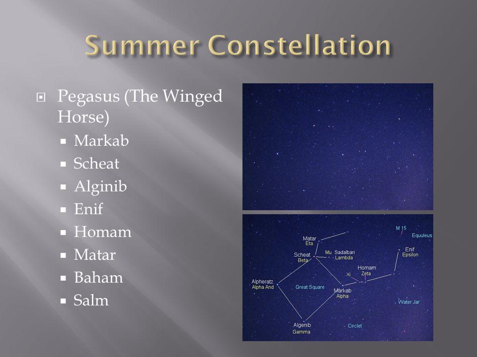  Pegasus (The Winged Horse)  Markab  Scheat  Alginib  Enif  Homam  Matar  Baham  Salm