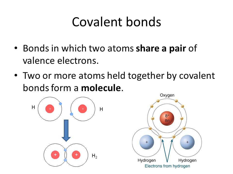 Covalent bonds Bonds in which two atoms share a pair of valence electrons.