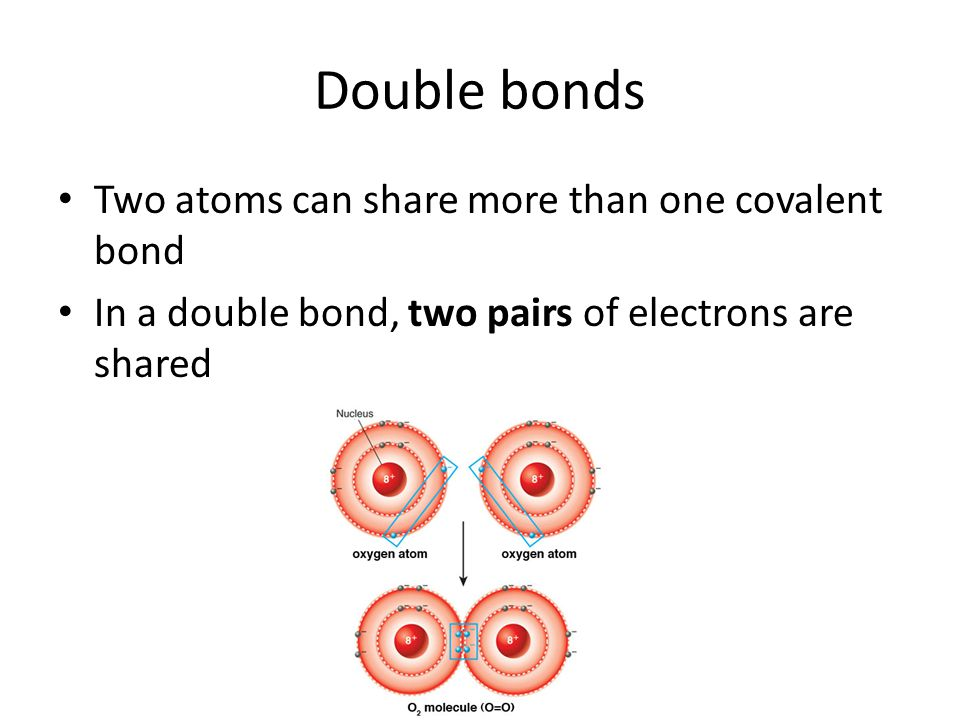 Double bonds Two atoms can share more than one covalent bond In a double bond, two pairs of electrons are shared