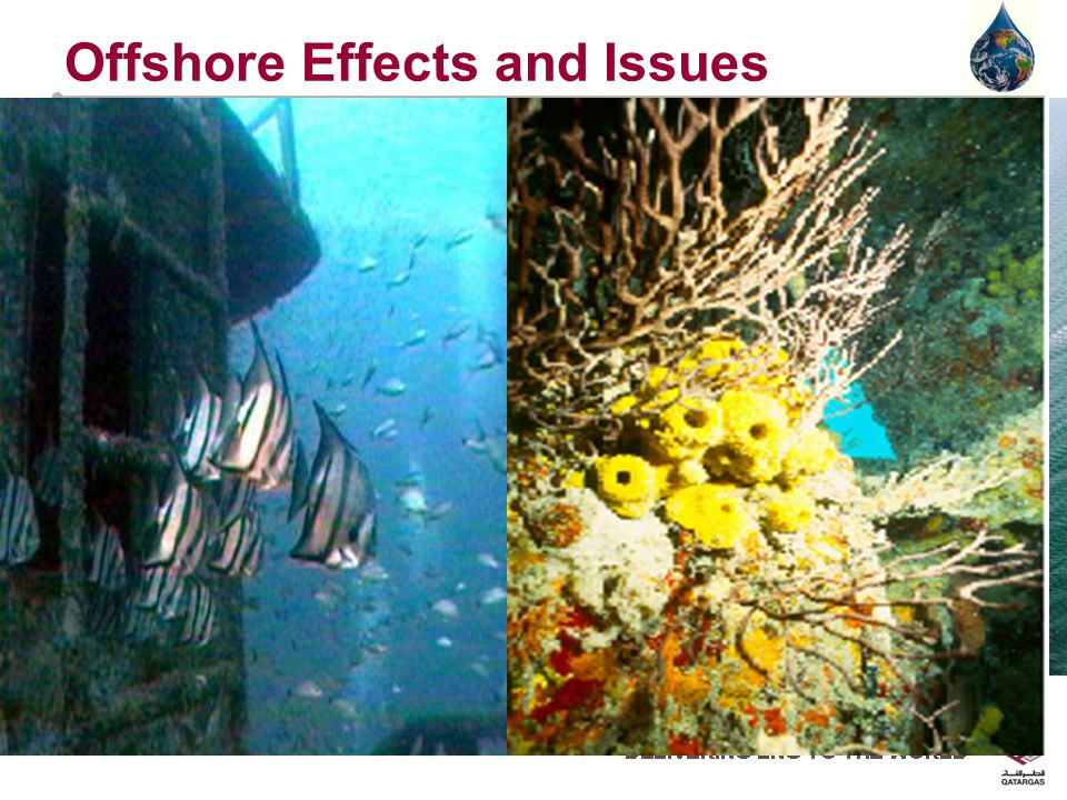 Offshore Effects and Issues Offshore Platforms If poorly designed and managed can affect marine environment Can have a positive effect Creation of artificial reef environment