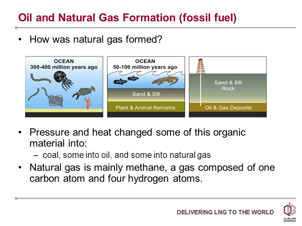 Oil and Natural Gas Formation (fossil fuel) How was natural gas formed.