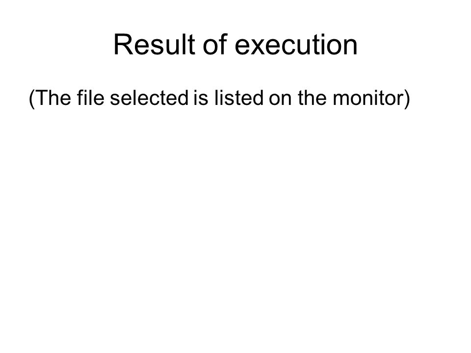 Result of execution (The file selected is listed on the monitor)