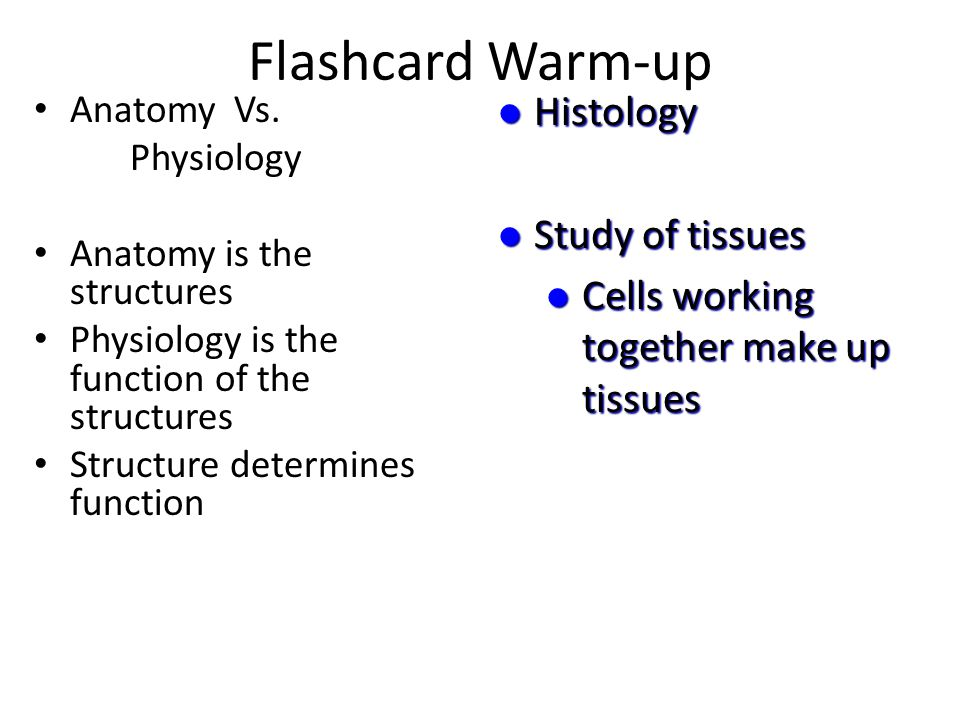 Flashcard Warm-up Metabolism All chemical reactions in the body; ex.