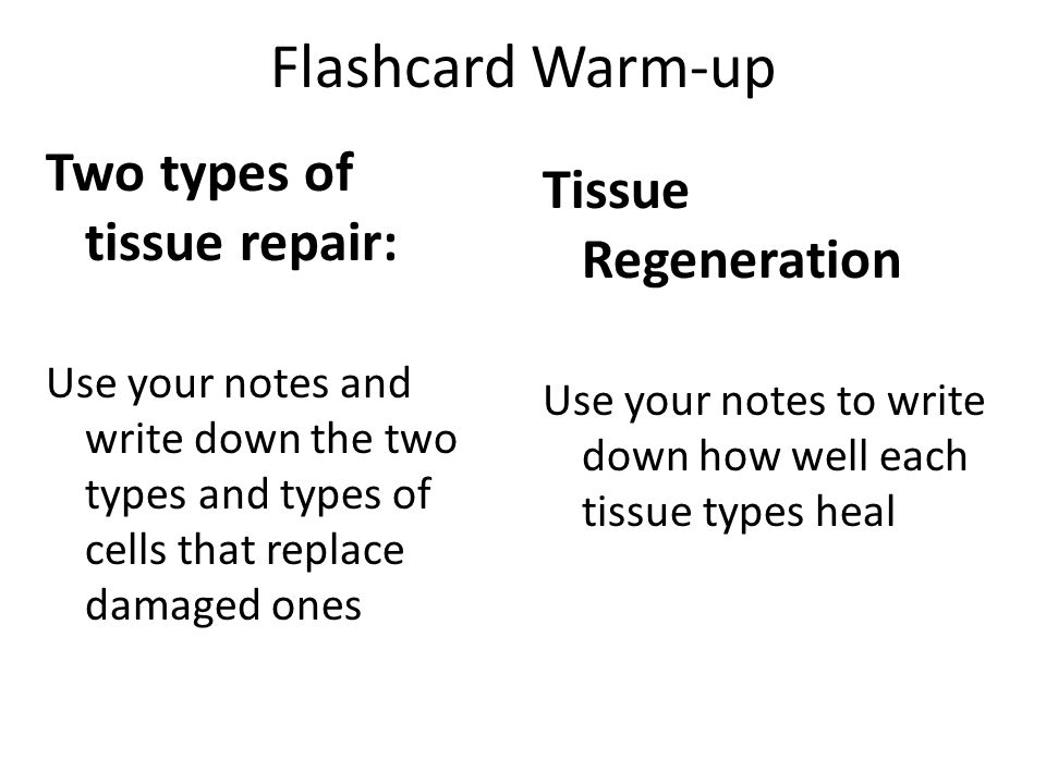 Flashcard Warm-up Two types of tissue repair: Use your notes and write down the two types and types of cells that replace damaged ones Tissue Regenera