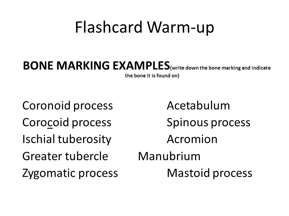 Flashcard Warm-up BONE MARKING EXAMPLES (write down the bone marking and indicate the bone it is found on) Coronoid processAcetabulum Corocoid process