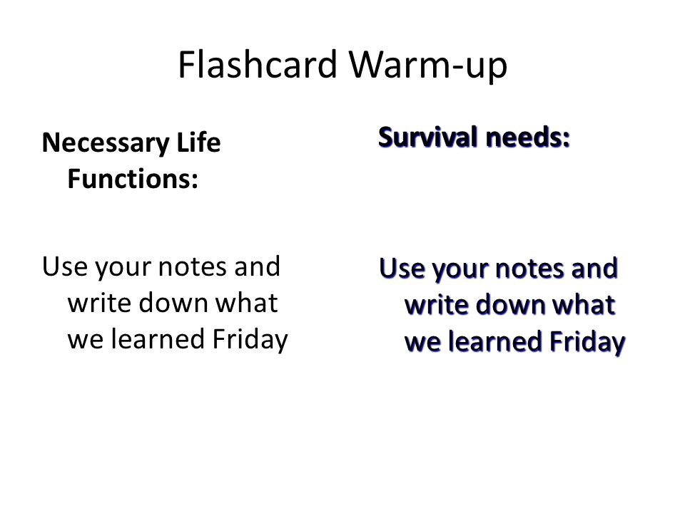 Flashcard Warm-up Bone Remodeling Three factors that affect bone remodeling are ____, _____ _____, and _____.