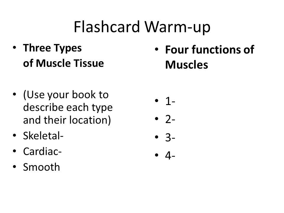 Flashcard Warm-up Three Types of Muscle Tissue (Use your book to describe each type and their location) Skeletal- Cardiac- Smooth Four functions of Mu