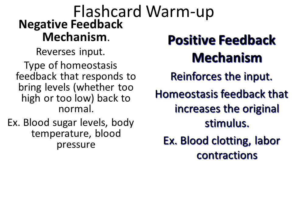 Flashcard Warm-up Negative Feedback Mechanism. Reverses input. Type of homeostasis feedback that responds to bring levels (whether too high or too low