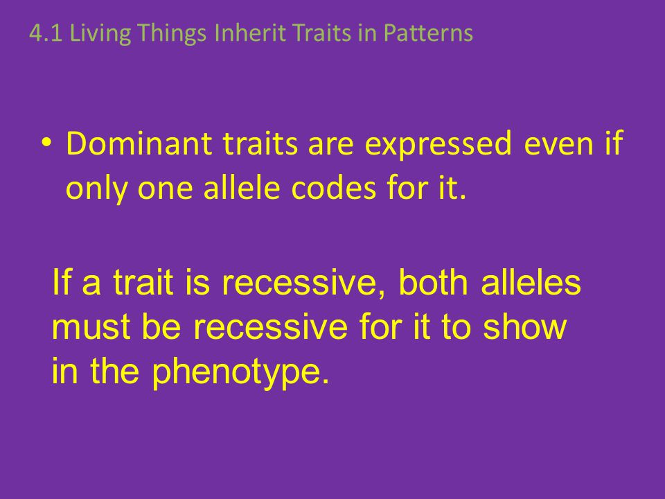 Why are some parents' traits expressed in their offspring while others are not? Dominant traits are expressed even if only one allele codes for it. 4.