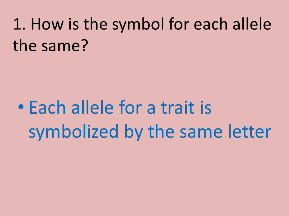 1. How is the symbol for each allele the same? Each allele for a trait is symbolized by the same letter